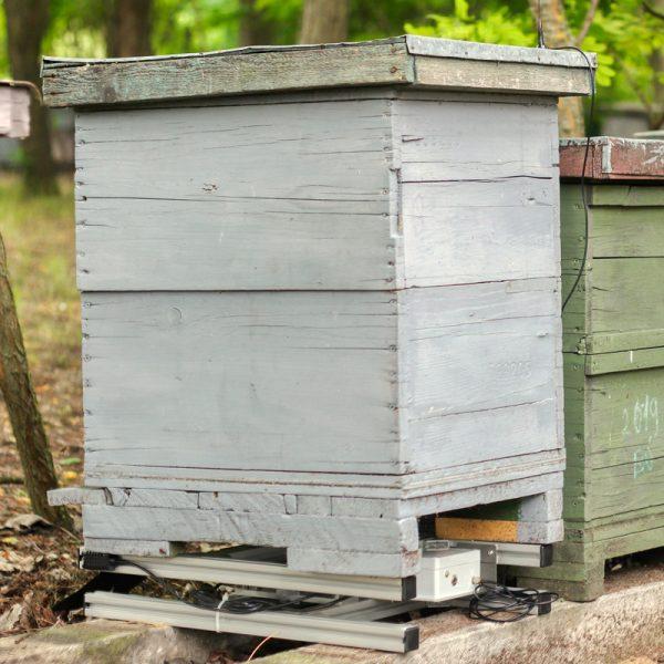 BeeHub Scale kaptármérleg